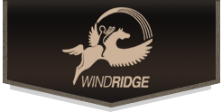 Wind Ridge Texas Logo